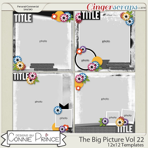 The Big Picture Volume 22 - 12x12 Temps (CU Ok) by Connie Prince