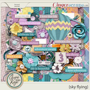 Sky Flying by Chere Kaye Designs