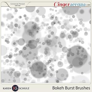 Bokeh Burst Brushes by Karen Schulz