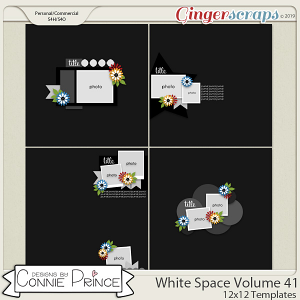 White Space Volume 41 - 12x12 Temps (CU Ok) by Connie Prince