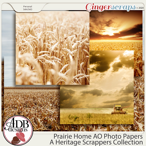 Prairie Home Add On Photo Backgrounds by ADB Designs