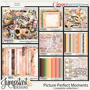 Picture Perfect Moments {Complete Collection}