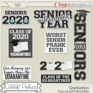 Graduation - 2020 Word Bits by Connie Prince