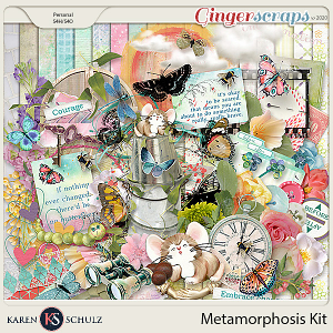 Metamorphosis Kit by Karen Schulz