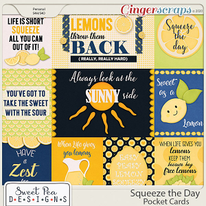 Squeeze the Day Pocketcards
