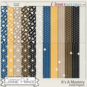 It's A Mystery - Extra Papers by Connie Prince