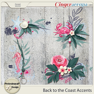 Back to the Coast Accents