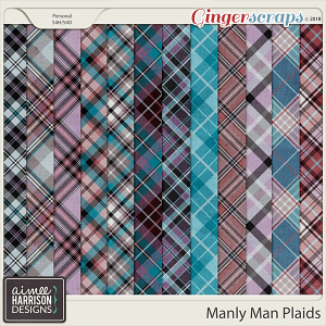 Manly Man Plaid Papers by Aimee Harrison