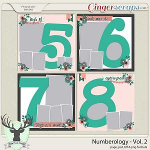 Numerology Vol 2