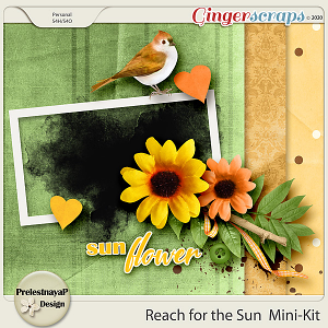 Reach for the Sun Mini-Kit