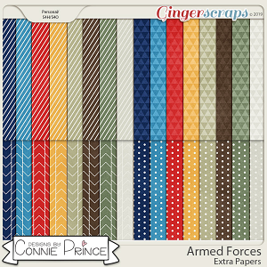 Armed Forces - Extra Papers by Connie Prince