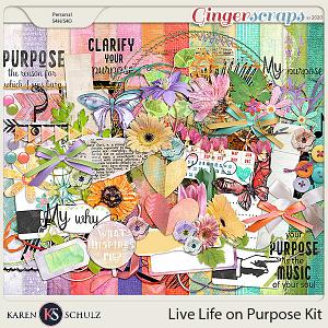 Live Life on Purpose Kit by Karen Schulz