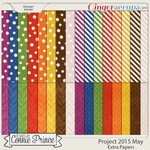 Project 2015 May - Extra Papers