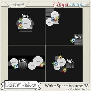 White Space Volume 38 - 12x12 Temps (CU Ok) by Connie Prince