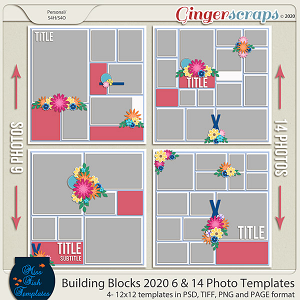 Building Blocks 2020 6 and 14 Templates by Miss Fish