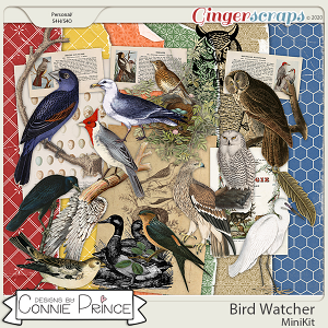 Bird Watcher - Birds MiniKit by Connie Prince