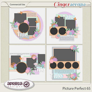 Picture Perfect 65
