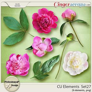 CU Elements Set27 by PrelestnayaP Design