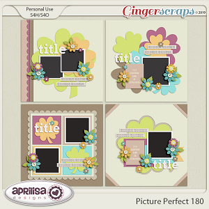 Picture Perfect 180 by Aprilisa Designs