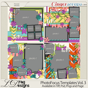Photo Focus Templates Vol. 3 by LDragDesigns