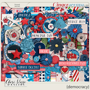 Democracy by Chere Kaye Designs