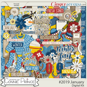 #2019 January - Kit by Connie Prince