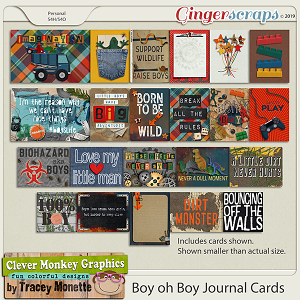 Boy oh Boy Journal Cards by Clever Monkey Graphics
