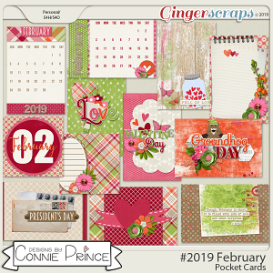 #2019 February - Pocket Cards by Connie Prince