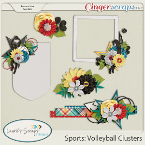 Sports: Volleyball Clusters
