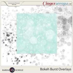 Bokeh Burst Overlays by Karen Schulz