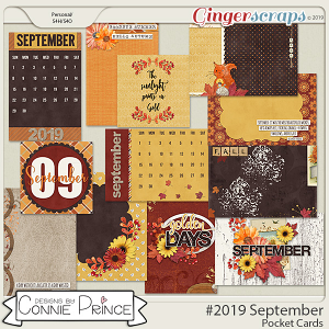 #2019 September - Pocket Cards by Connie Prince