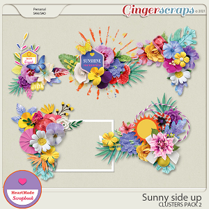 Sunny side up - clusters pack 2