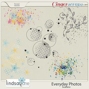Everyday Photos Scatterz by Lindsay Jane