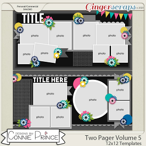 Two Pager Volume 5 - 24x12 Temps (CU Ok) by Connie Prince