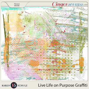 Live Life on Purpose Graffiti by Karen Schulz