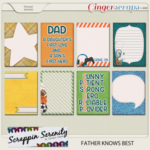 Father Knows Best Journal Cards