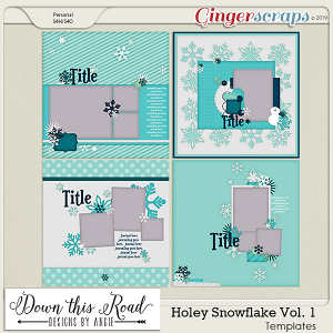 Holey Snowflake | Vol. 1