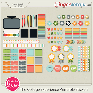 The College Experience Printable Stickers by Studio Liv