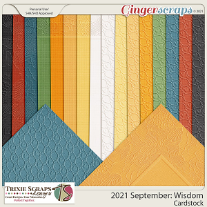 2021 September: Wisdom Cardstock by North Meets South Studios
