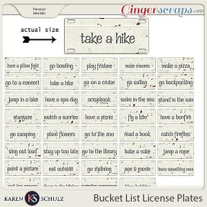 Bucket List License Plates by Karen Schulz