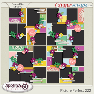 Picture Perfect 222 by AprilisaDesigns