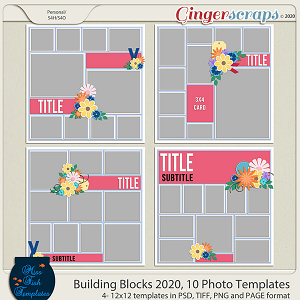 Building Blocks 2020 10 Photo Templates by Miss Fish