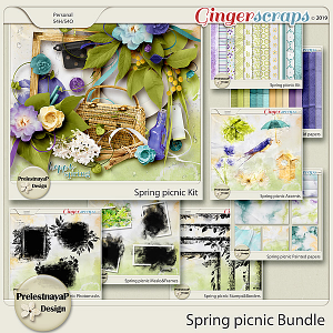 Spring picnic Bundle
