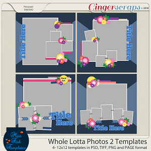 Whole Lotta Photos 2 Templates by Miss Fish