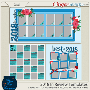 2018 In Review Templates by Miss Fish