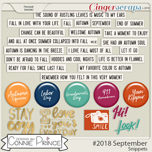 #2018 September - Snippets by Connie Prince