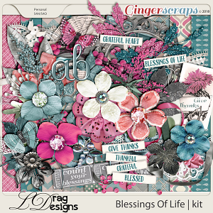 Blessings Of Life by LDragDesigns