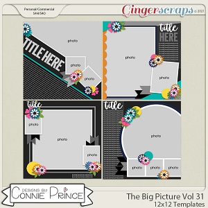 The Big Picture Volume 31 - 12x12 Temps (CU Ok) by Connie Prince