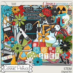 STEM - Kit by Connie Prince