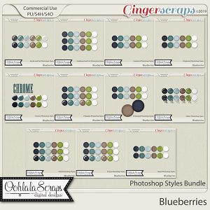 Blueberries CU Photoshop Styles Bundle